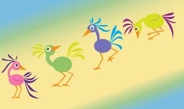 Four crazy birds Royalty Free Stock Photo