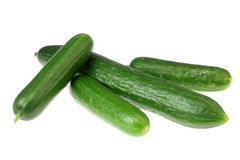 Four cucumbers on white. Royalty Free Stock Photography