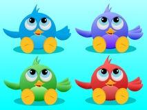 Four cute Birds Stock Photos