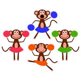 Four cute cheerleader monkeys Royalty Free Stock Photography