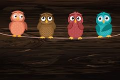 Four cute colored owlet sitting on a rope. A red hearts with a p. Icture hanging on a rope. Valentine`s Day. Vector illustration on wooden background. Greeting vector illustration