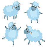 Four cute lambs Stock Image