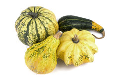 Four Decorative Pumpkins Royalty Free Stock Photos