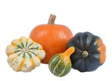 Four decorative pumpkins Royalty Free Stock Image