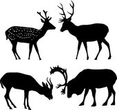 Four deer silhouettes Stock Photography