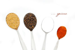 Four diferent spices in spoons Royalty Free Stock Image
