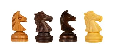 Four different chess knights royalty free stock photography