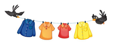 Four different clothes hanging with birds Stock Images