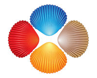Four different colored seashells Stock Photos