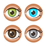 Four different colour eyes brown, blue, green, grey. Vector illustration for your cute design Stock Image