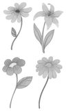 Four different kind of flowers Royalty Free Stock Photos