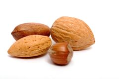 Four different nuts. Isolated on white Royalty Free Stock Image