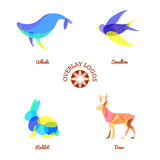 Four different overlay animal logos isolated on white background, whale, deer, rabbit and swallow Royalty Free Stock Image