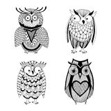 Four different owls - Owl variation Stock Photography
