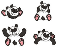 Four different poses pandas royalty free illustration
