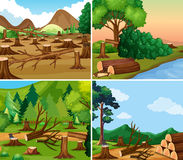 Four different scenes of deforestation Royalty Free Stock Photography