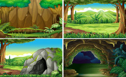 Four different scenes of forests. Illustration Royalty Free Stock Image