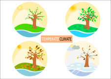 Four different season type round icons / simplistic drawings Royalty Free Stock Image