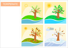 Four different square shaped season type icons / simplistic drawings Stock Photos