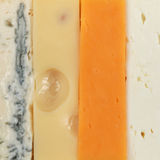 Four different types of cheese Royalty Free Stock Photo