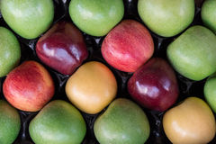 Four different types of ripe apples in a box. Stock Images