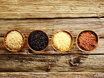 Four different varieties of dried rice Royalty Free Stock Images