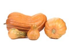 Four diffrents orange pumpkins Royalty Free Stock Photos