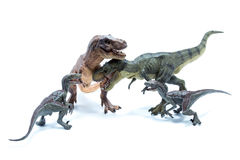 Four Dinosaur Tyrannosaurus Rex and Velociraptors fighting and b Stock Images