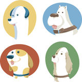 Four Dogs Stock Image