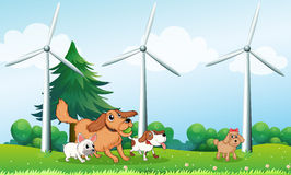 Four dogs playing in front of the windmills. Illustration of the four dogs playing in front of the windmills vector illustration