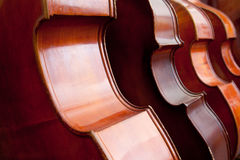 Four double basses in a row. Closeup of four double basses in a row royalty free stock images