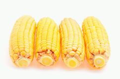 Four ears of corn Stock Photos