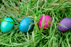 Four Easter eggs in the grass Stock Photography