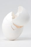 Four Egg Shell Stack Stock Photos