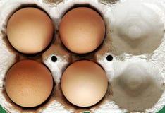 Four Eggs royalty free stock photos
