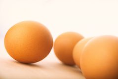Four eggs Royalty Free Stock Images