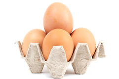 Four eggs in cell Stock Image