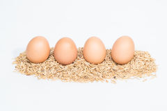 Four eggs with husk Royalty Free Stock Photos