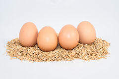 Four eggs with husk Stock Images