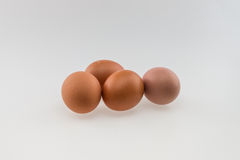 Four eggs Stock Photography
