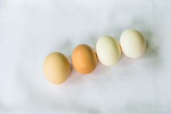 Four eggs on a light background Royalty Free Stock Images