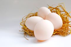 Four eggs on the net Royalty Free Stock Photo