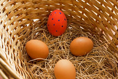 Four eggs but one of them is already Easter. Royalty Free Stock Image