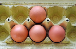 The four eggs in the shape of a triangle. The detail of egg boxes with four eggs in the shape of a triangle Stock Photo
