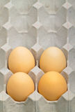 Four eggs in a tray. Stock Photo