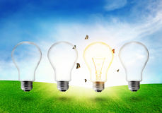 Four electric light bulb on grassland. Eco energy concept. Royalty Free Stock Images