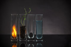 The four elements still-life. The four elements - Fire, Earth, Air and Water arranged in glass vases stock image