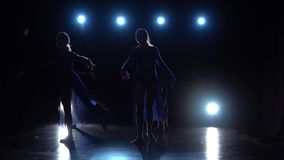 Four experienced charming ballerinas dancing modern ballet. Slow motion. Four experienced charming ballerinas in light dresses dancing elements of modern ballet stock video footage