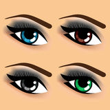 Four eyes with different eye colors Royalty Free Stock Photography
