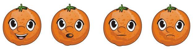 Four faces of oranges Stock Image